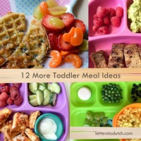 12 More Toddler Meal Ideas